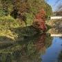 堀の水面に映る紅葉