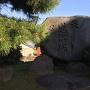 蓮沼城跡碑