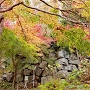 紅葉に隠れた二の丸石垣