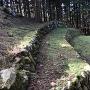 桜馬場下の段々になってる石垣