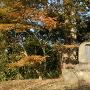 茶臼山公園碑