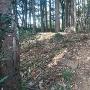 本郭土塁の石積の跡