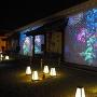 台所前の蔵 ~ Flowers by naked ― 京都・二条城 ―