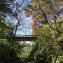 竪堀内から望む白兎橋