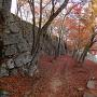 本丸鐘つき堂裏の石垣