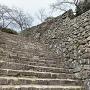本丸大石段と石垣