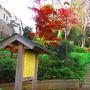 殿山公園という名の竪堀?