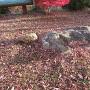 亀岩(本丸)