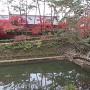 内堀跡と紅葉