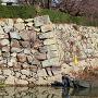 三の丸南東石垣と、クリーン作戦のボート