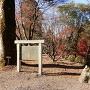 「史蹟長篠城阯」石碑と説明板