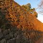 夕陽に照らされる本丸石垣