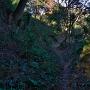 セッテイ山(Ⅶ郭)の北、物見の下の登城道