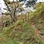 本丸(東城・金寿城)登り口