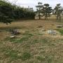 勝瑞城館の枯山水庭園跡