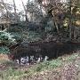 馬洗池(二の丸跡側)