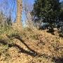 倒壊した城址石碑