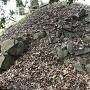 城跡石碑の下の石垣