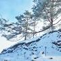 城址雪景(本丸を見上げる)