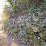 善福寺曲輪の石垣