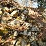 破壊された石垣