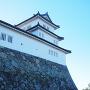 西の丸三重櫓(出廓から)