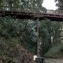 木橋   / 本丸-中の丸②