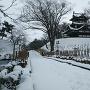 観桜会撮影スポットより 2(2019冬、雪化粧)