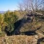 空堀(三ノ丸と西ノ城の間)