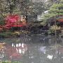 下屋敷庭園<清水園>の庭