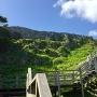 見上げる城郭と階段
