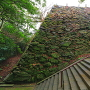 本丸東部の内側石垣