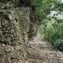 グスクへの登城路
