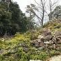 南側の石垣群
