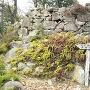 南曲輪群の石垣