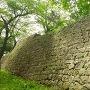 本丸跡東面の石垣