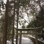 毛利隆元墓所階段中の鳥居(現代物である)