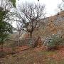 帯郭と二の丸南面の石垣(1)