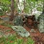 武蔵の庭園、阿波青石で組まれた滝の跡