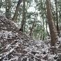 堀切(主郭北側)