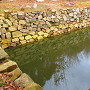 大松山 大池