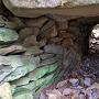 謎のトンネル状石積(内側を覗く)