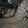 二の丸石垣(海側)