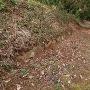 列石と土塁(見学地から少し登って)