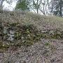 岡田丸から見た本丸石垣