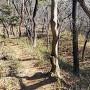 横堀(八王子山ノ砦)