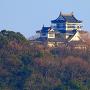 模擬天守と絵馬堂を大桑島の展望台から