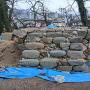 二ノ丸艮櫓跡(土塁上から)