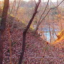 堀の向こうには荒川