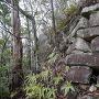 山頂東側下にある石垣